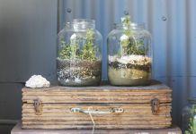 Jak zrobić las w słoiku