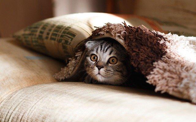 Zdradź mi, jak śpisz, a podpowiem ci, jaka poduszka będzie dla ciebie odpowiednia